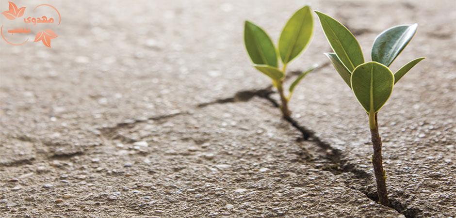 راهکارهای افزایش امید به زندگی